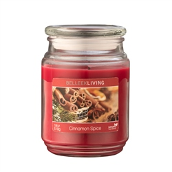 Belleek Living Cinnamon Spice Candle