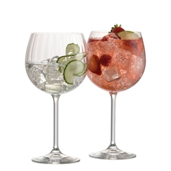 Galway Living Erne Gin and Tonic Pair