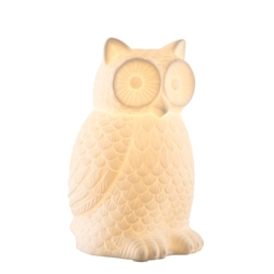 Belleek Living Wise Owl Luminaire