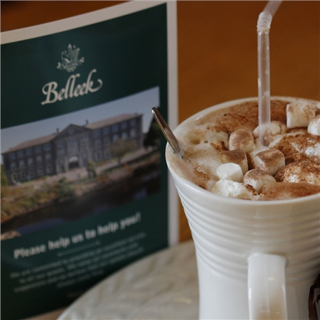 Belleek Classic Visitor Centre Tour TIcket & Tea Special Offer  - Click to view a larger image